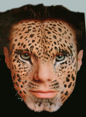 attachment_p_170367_0_cara_leopardo.jpg